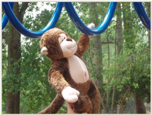 Monkey Bars designed to be fun AND healthy